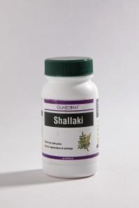 Guardian Shallaki